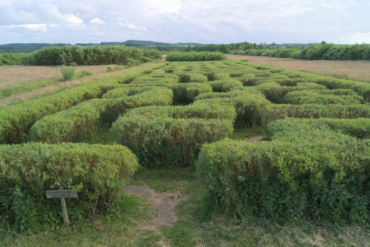 _W_labiryntach_In_the_labyrinths_Educational_Farm_EN