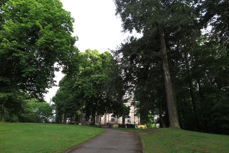 Park pałacowy