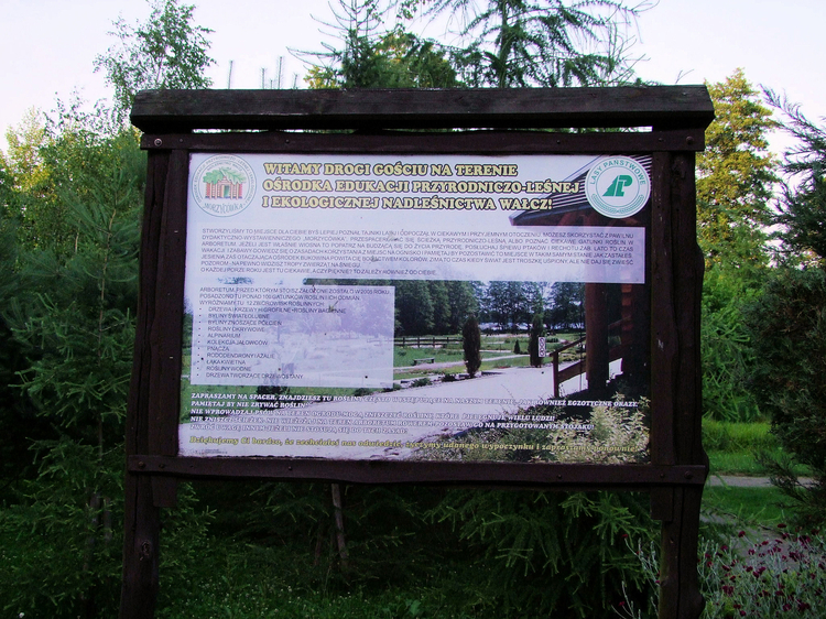 The_Morzycowka_Natural_Science_Forest_and_Ecological_Education_Centre