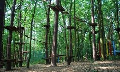 """Tarzania"" Ropes Course"